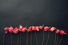 Goth Style Dry Roses, Black Background Stock Photo