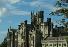 Gothic architecture of the castle Stock Photography