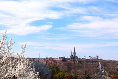 Gothic building of Georgetown University in spring blossom. Royalty Free Stock Image