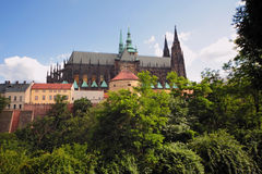 The gothic cathedral Royalty Free Stock Photo