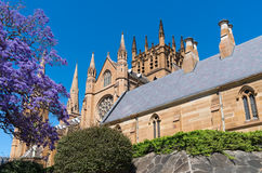 Gothic Cathedral in Sydney Royalty Free Stock Images