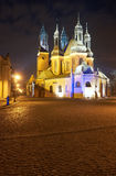 Gothic cathedral towers at night Stock Image