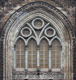 Gothic cathedral windows Stock Image