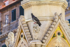 Gothic decoration and sculpture Stock Photography