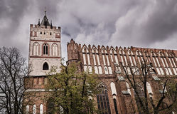 The Gothic facade of the town hall. In Frankfurt an der Oder Royalty Free Stock Images