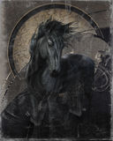 Gothic Friesian Horse. A glorious Friesian horse in gothic look on a grunge dark background Stock Images