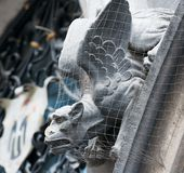 Gothic gargoyle Royalty Free Stock Images