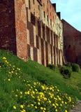 Gothic garner in Grudziadz Stock Image