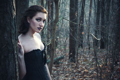 Gothic girl in a autumn forest Stock Images