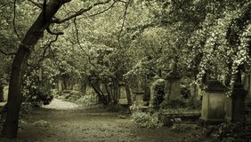 Gothic graveyard in London city stock photography
