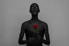 Gothic and Halloween theme: a man with black skin holding a red rose, black death isolated on a gray background in studio. Gothic and Halloween theme: a man with stock photo