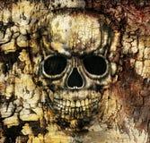 Gothic Human Skull Royalty Free Stock Photos