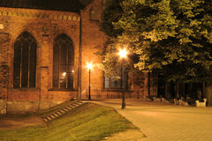 Gothic night park royalty free stock photography