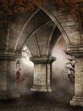 Gothic ruins with red vines. Gothic ruins with fog and red vines Royalty Free Stock Images
