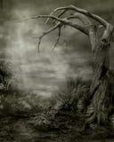 Gothic scenery 06 Stock Image