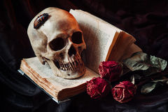 Gothic still life with skull stock image