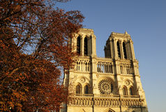 Gothic style building of  cathedral Notre dame Royalty Free Stock Images