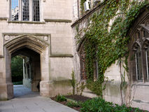 Gothic style building, University of Chicago Royalty Free Stock Photography