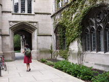 Gothic style building, University of Chicago Stock Photos