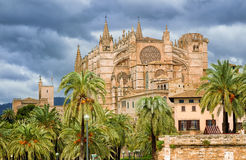 Gothic style Dome of Palma de Mallorca, Spain. La Seu, medieval gothic cathedral of Palma de Mallorca, in the palm tree garden, Spain Royalty Free Stock Photography