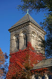 Gothic university building Royalty Free Stock Images