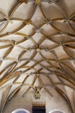 Gothic vault Stock Images