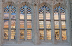 Gothic Window. Window of gothic style building in Princeton University, with reflection of another building at sunset Stock Images