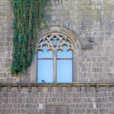 Gothic Window and ivy Royalty Free Stock Photography