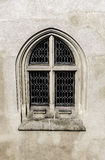 Gothic window. Stock Photography