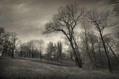 Gotisch landschap Royalty-vrije Stock Foto's