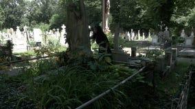 Gotisch meisje die op schreeuwend engelenstandbeeld leunen in begraafplaatshoogtepunt van bomen en vegetatieogenblik van stilte stock videobeelden