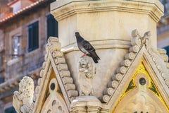 Gotische Dekoration und Skulptur Stockfotografie