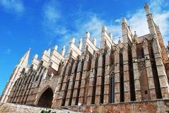 Gotische Kathedraal Stock Fotografie