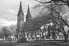 Gotische kathedraal van Vysehrad Stock Foto's
