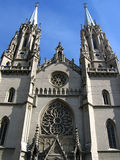 Gotische Kathedrale Stockbilder