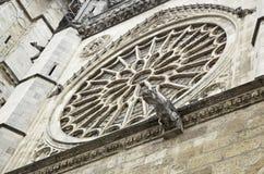 Gotische Kirche des Wasserspeiers Lizenzfreie Stockbilder