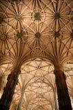 Gotische kluis Royalty-vrije Stock Foto's