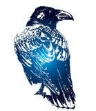 Gotische raaf -, schets van tatoegering Royalty-vrije Stock Foto's
