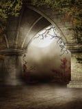 Gotische ruïnes met groene wijnstokken stock illustratie