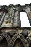 Gotische Ruine - Holyrood-Abtei - Detail Stockfoto