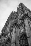 Gotische Vysehrad-kathedraal in Praag met mooie steenstandbeelden in zwart-wit royalty-vrije stock afbeelding