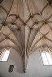 Gotischer gewellter Vaulting Stockbilder
