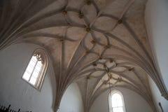Gotischer gewellter Vaulting Stockbild