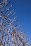 Gotisches fence-02 Lizenzfreies Stockbild