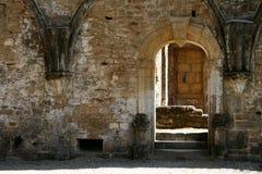 gotisk dörr 6 Royaltyfri Foto