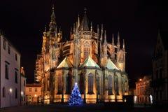 Gotisk domkyrka för St Vitus på den Prague slotten i natten, Tjeckien Fotografering för Bildbyråer