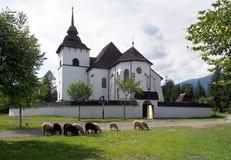 Gotisk kyrka i Pribylina med får Royaltyfri Foto
