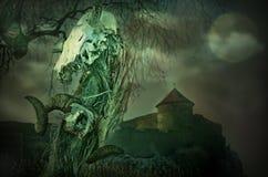 Gotisk skalle nära den gamla fästningen med månen arkivbilder