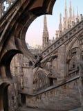 gotiska förvecklingar Arkivbilder