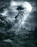 gotiskt landskap 10 Arkivfoton